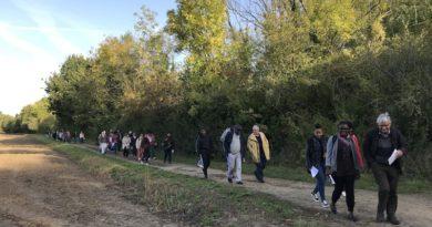 Photos Pèlerinage Meaux 2019